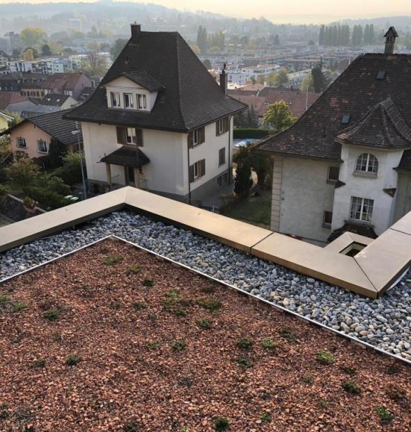 Biel, Fuchsenried – Tscheneyweg STWG